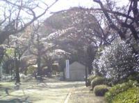 321-2.jpg