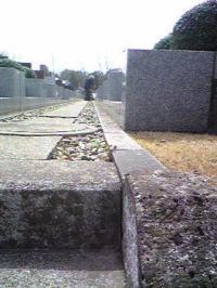 596-2.jpg